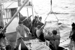 la-Pesca-007
