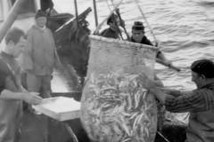 la-Pesca-008