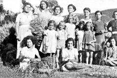 mietitura-11-giugno-1937-A